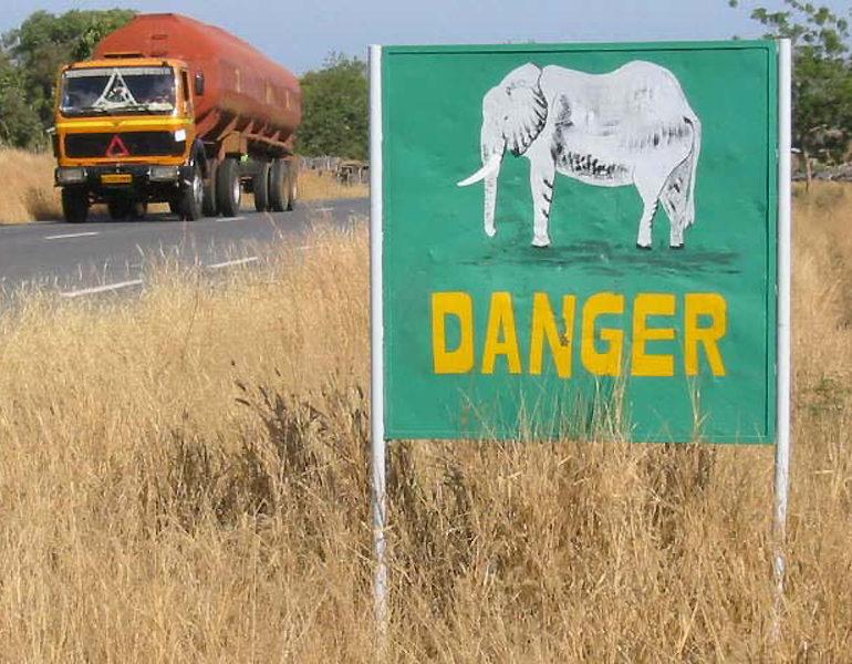 Parc de la Pendjari – Danger Elephant